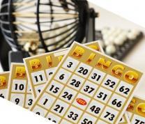 Mail-A-Book: Bingo! image
