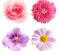 Celebrate Spring with Sparkly Flowers Collage