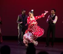Summer Reading: Flamenco Vivo II presents Fiesta Flamenca image