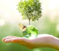 Pollinator Pathways: A Hunters Point Environmental Education Center Program
